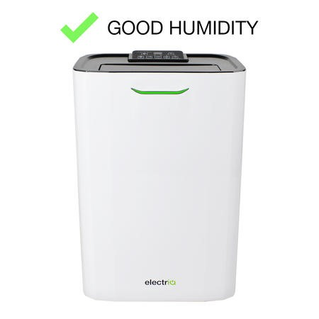 electriQ 8 litre Fast-Dry Desiccant  Dehumidifier with Air Purifier for 2-5 bed House